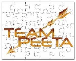 Hunger Games Team Peeta Puzzle
