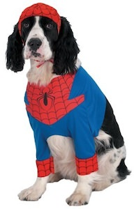 Spider-Man costume for the dog