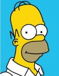 The Simpsons Homer Simpson Magnet