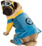 Despicable Me 2 Minion Dog Costume