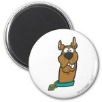 Scooby Doo Weird Look Magnet