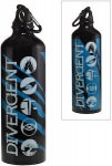 Divergent Fractions Water Bottle
