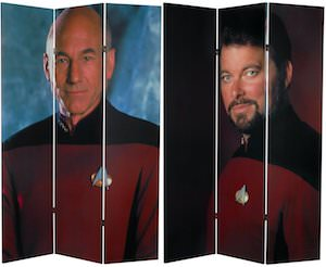 Star Trek divider screen
