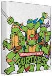 Avery Teenage Mutant Ninja Turtles Group Shot Binder