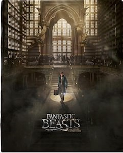 Fantastic Beasts and Where to Find Them Blanket
