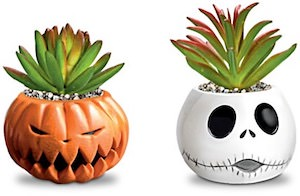 The Nightmare Before Christmas Succulents Collection