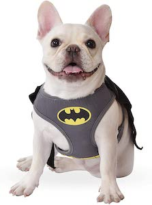 Batman Dog Harness And Costume