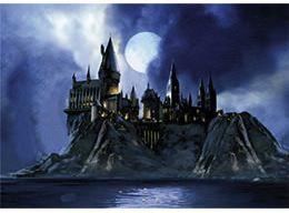 Hogwarts Castle Puzzle
